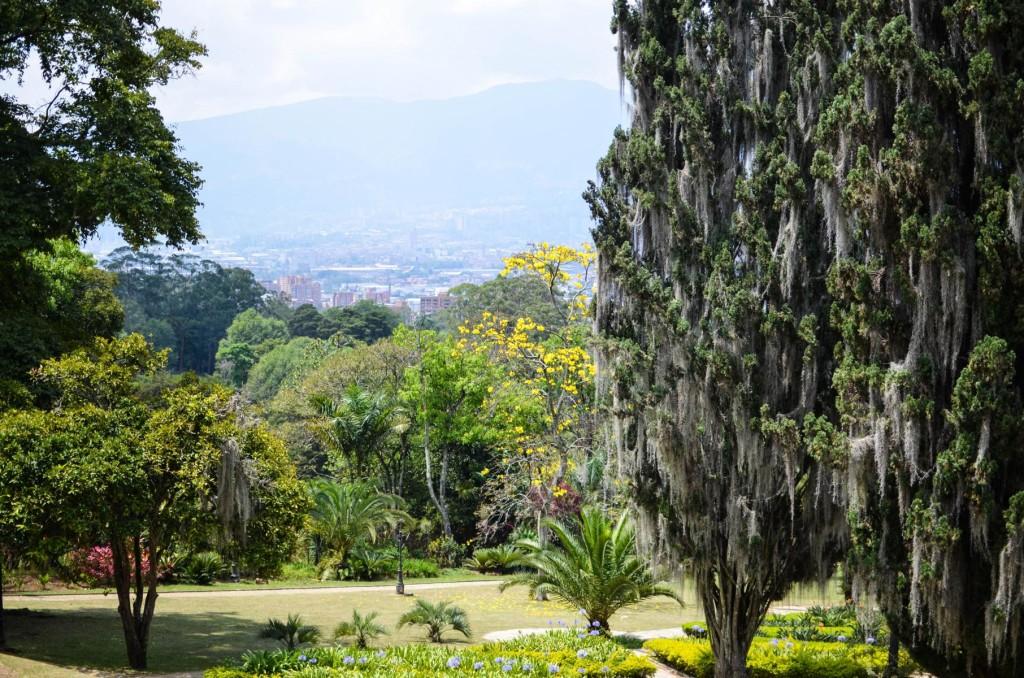 Medellin (27 von 32)